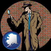 alaska a private detective with a brick wall background