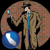 california a private detective with a brick wall background