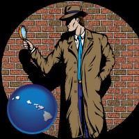 hawaii a private detective with a brick wall background