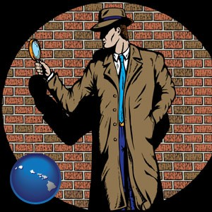 a private detective with a brick wall background - with Hawaii icon